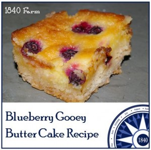 Blueberry Gooey Butter Cake at 1840 Farm