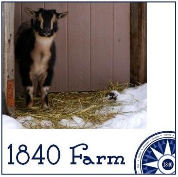 1840 Farm Goats