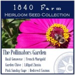The 1840 Farm Pollinators Garden
