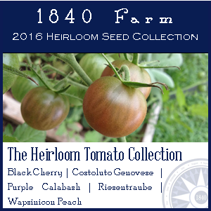 HeirloomTomatoCollection