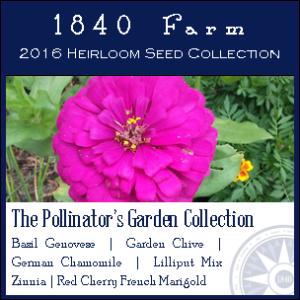 PollinatorGarden