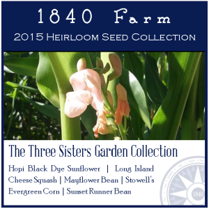 Three Sisters Garden Heirloom Seed Collection