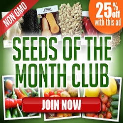 SeedsOfTheMonthClub