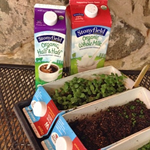 Recycled Dairy Carton Seed Starting Containers at 1840 Farm