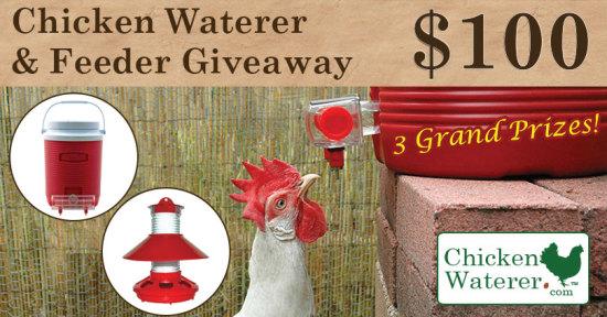 chickenwaterer-810bnr