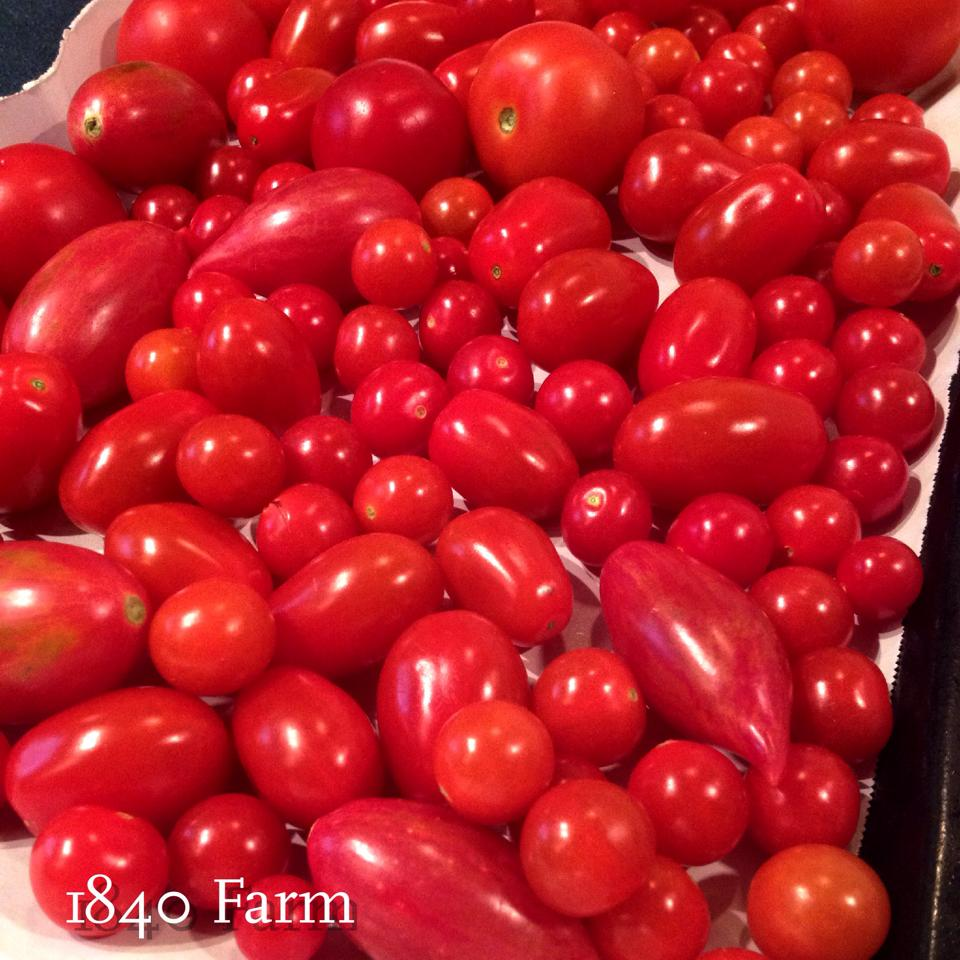Freezing Cherry Tomatoes For Long Term Storage