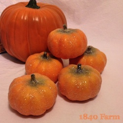 Glittery Pumpkins at 1840 Farm